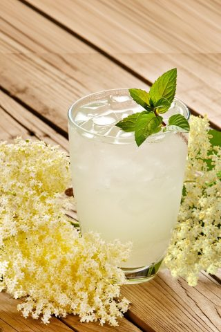Elderflower G&T