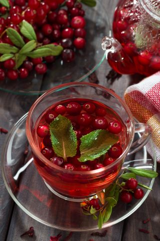 Cranberry & Lime Fruit Infusion